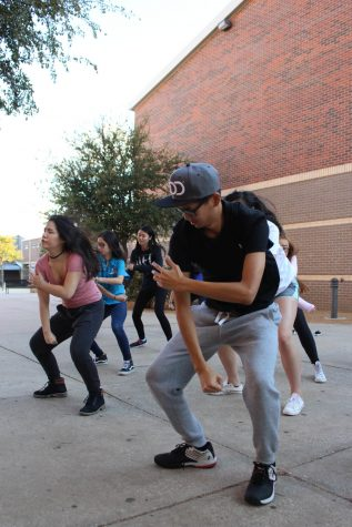Dancing for a Cause, Performance for a Purpose