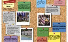 Plano West's Declassified School Survival Guide